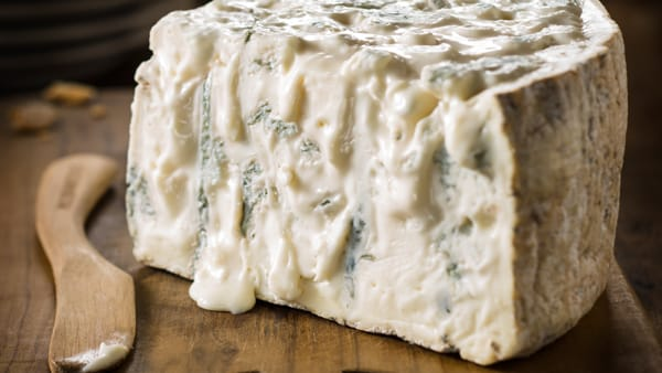 Cameri: a maggio torna la tradizionale sagra del gorgonzola