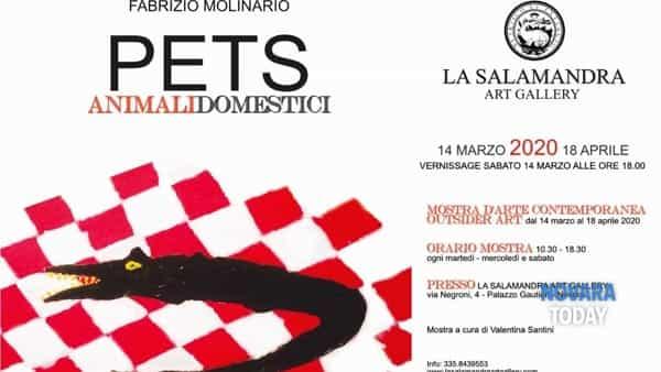 """""""Pets - animali domestici"""": mostra di Fabrizio Molinario"""