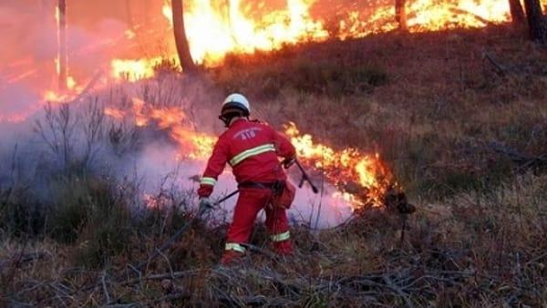 Emergenza incendi in Piemonte: dichiarato lo stato di massima allerta