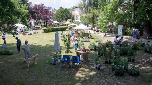 """Menta e rosmarino: sul Lago d'Orta il festival """"green"""" dedicato ad arte, giardini e paesaggio"""